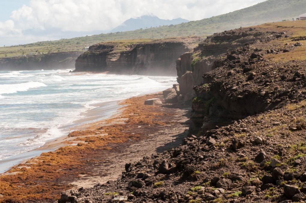 Zeelandia beach with mysterious cliffs and sargassum.