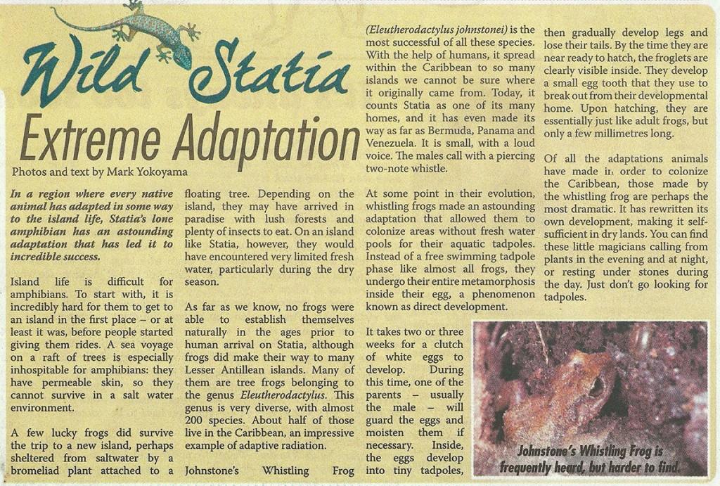 WildStatia-ExtremeAdapatation-web