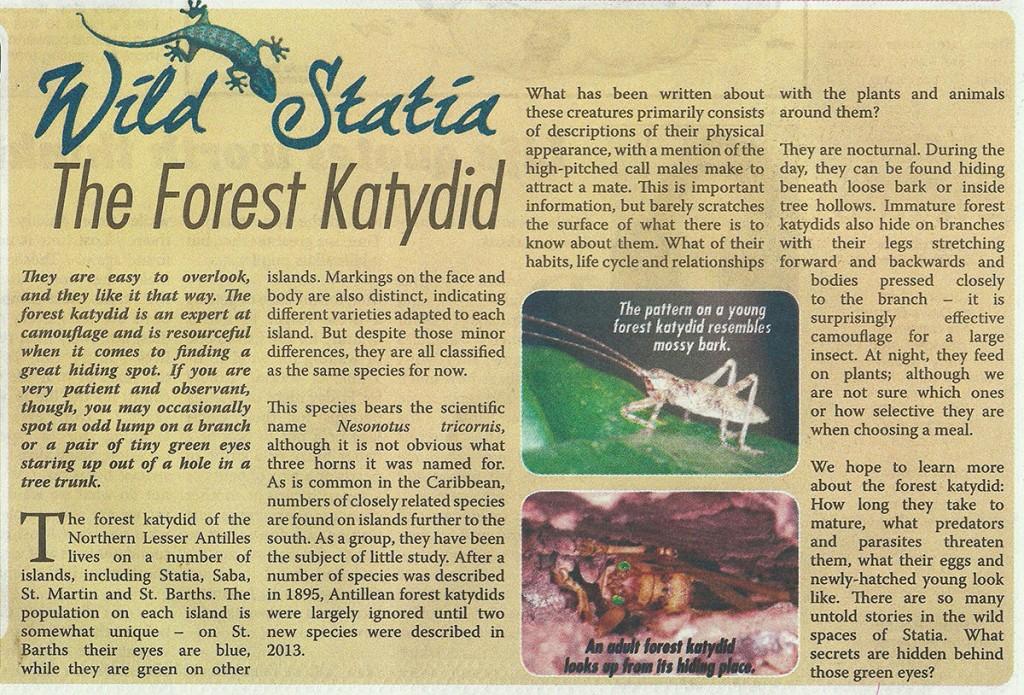 WildStatia-Forest-Katydid-web