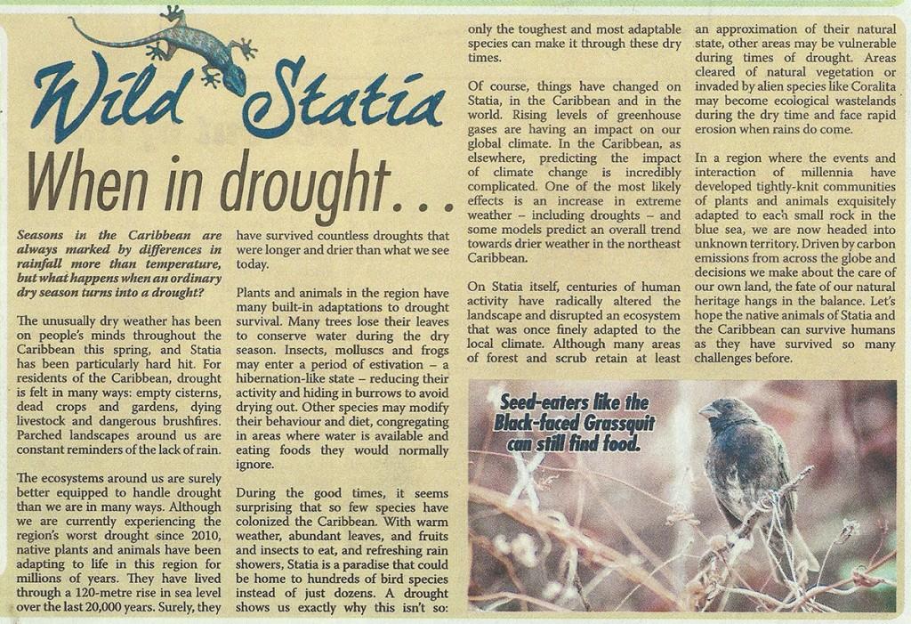 WildStatia-When-in-Drought-web