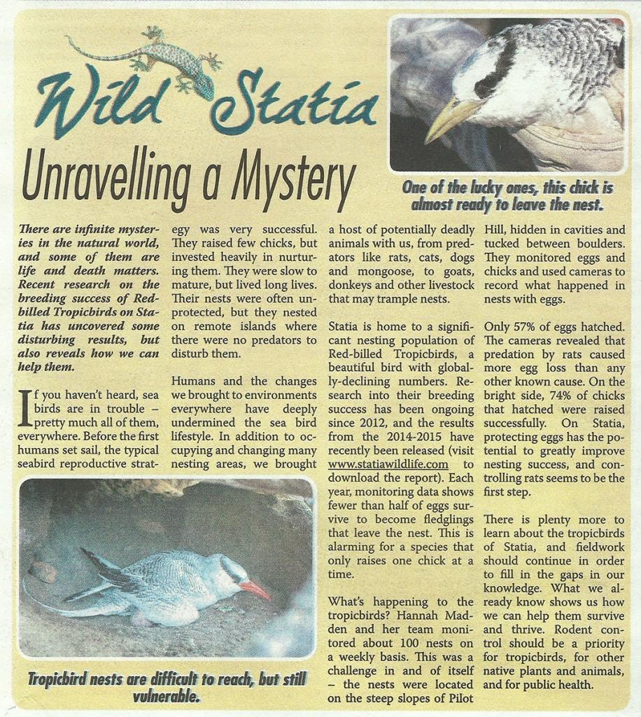 WildStatia-UnravellingAMystery-web