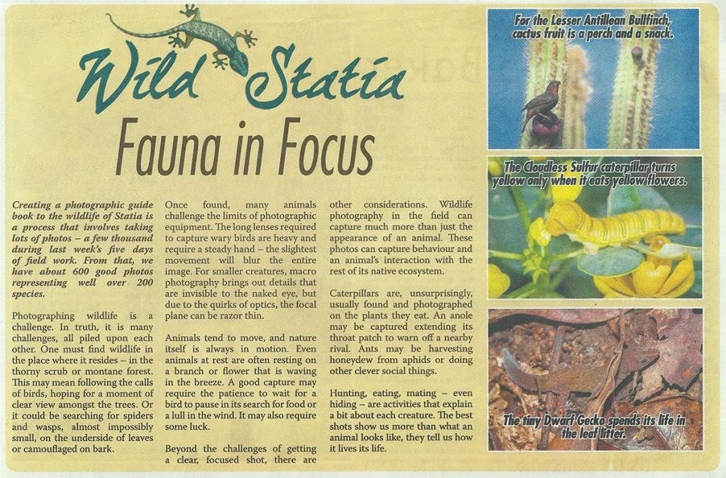 WildStatia-FaunaInFocus-web