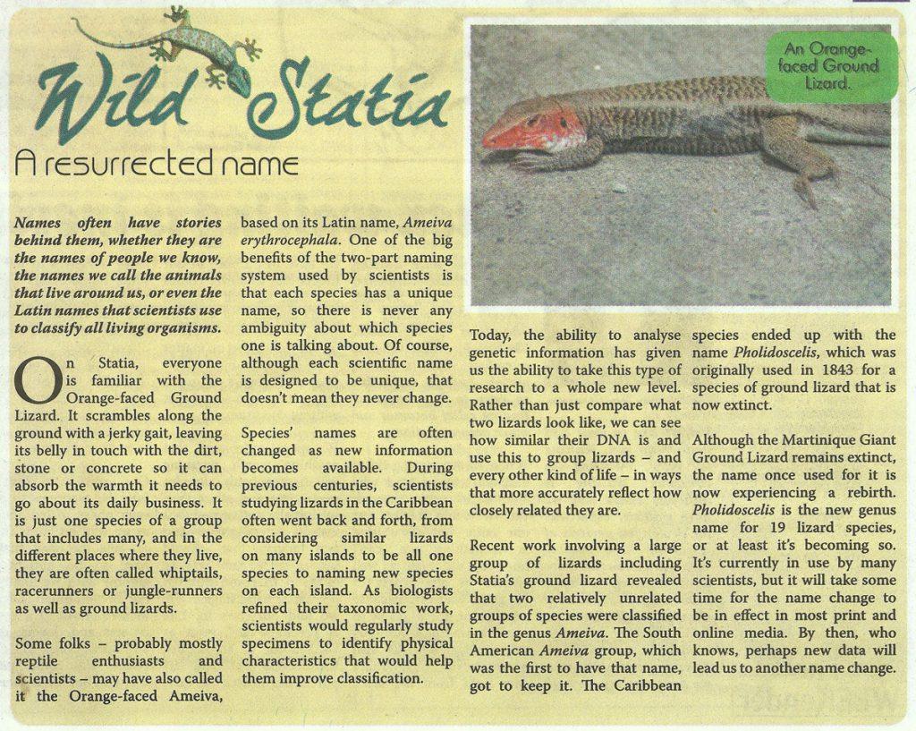 wildstatia-resurrectedname-web