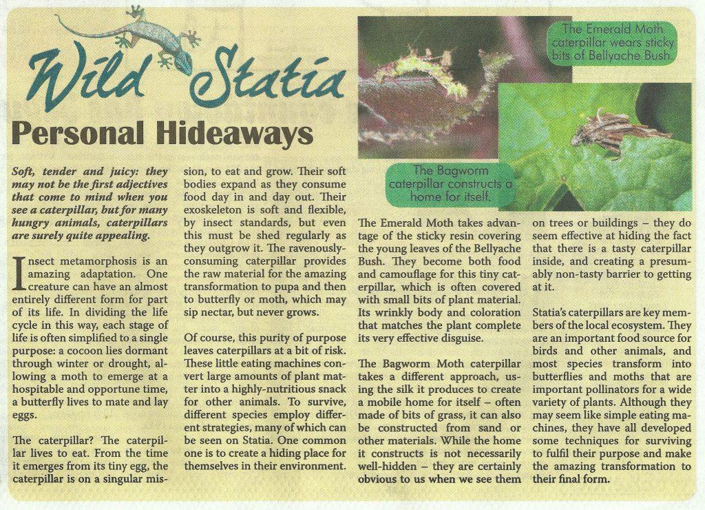 wild-statia-personal-hideaways