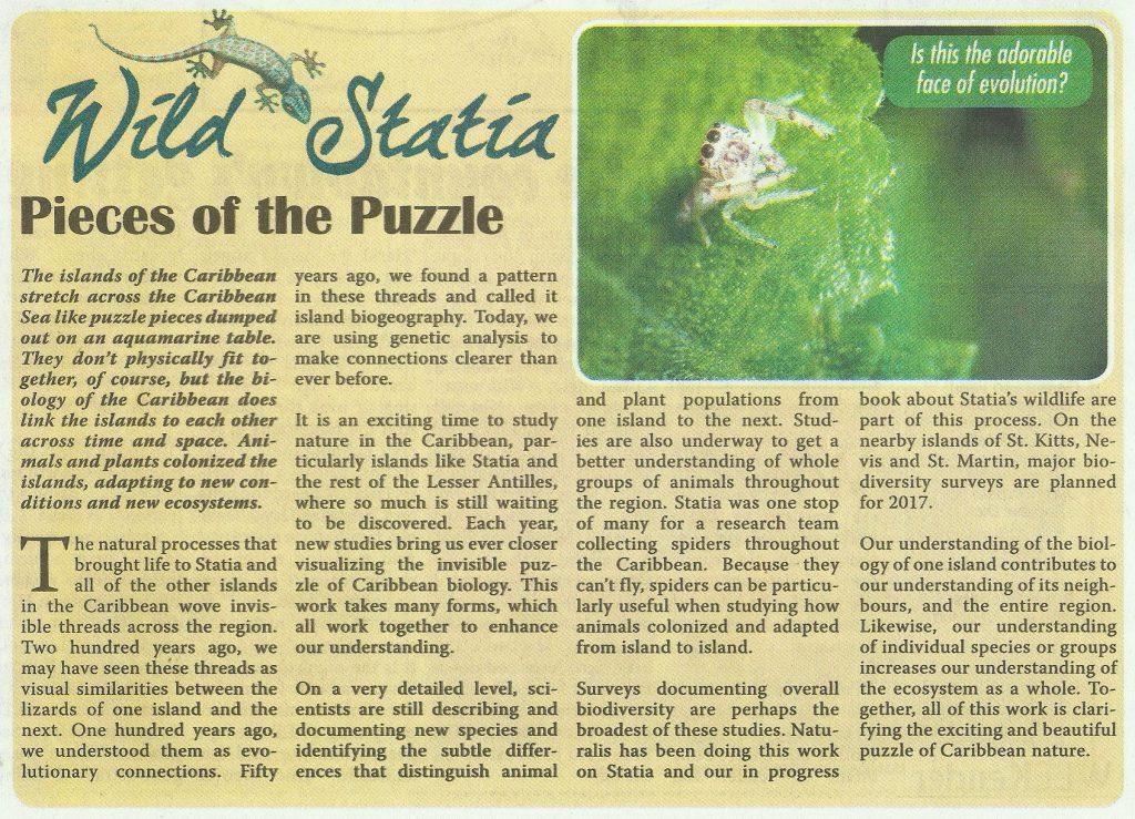 wild-statia-pieces-of-the-puzzle